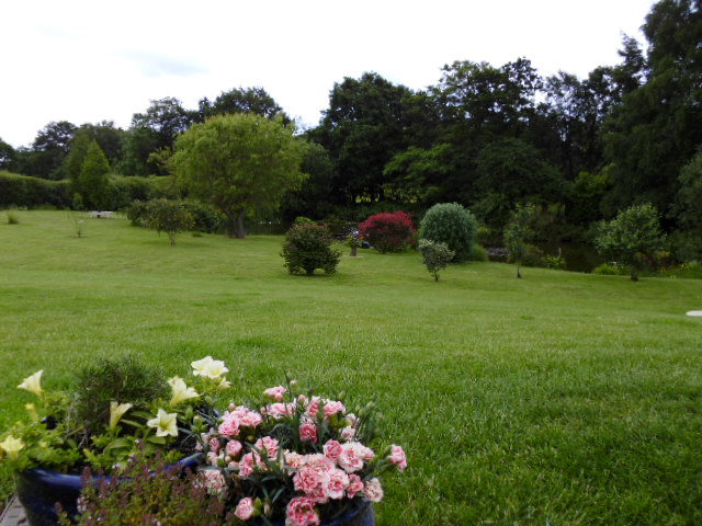View across the lawn to the pond