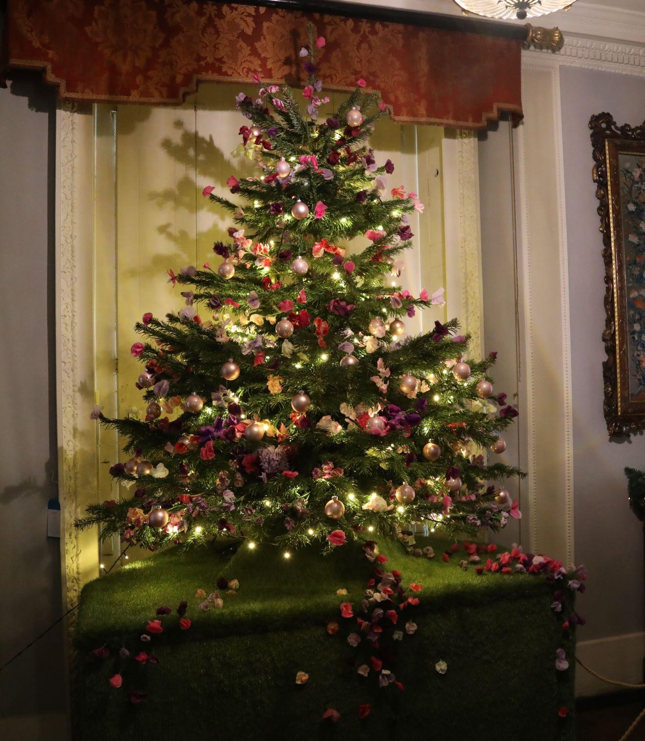 Christmas-Shugborough-2-2019