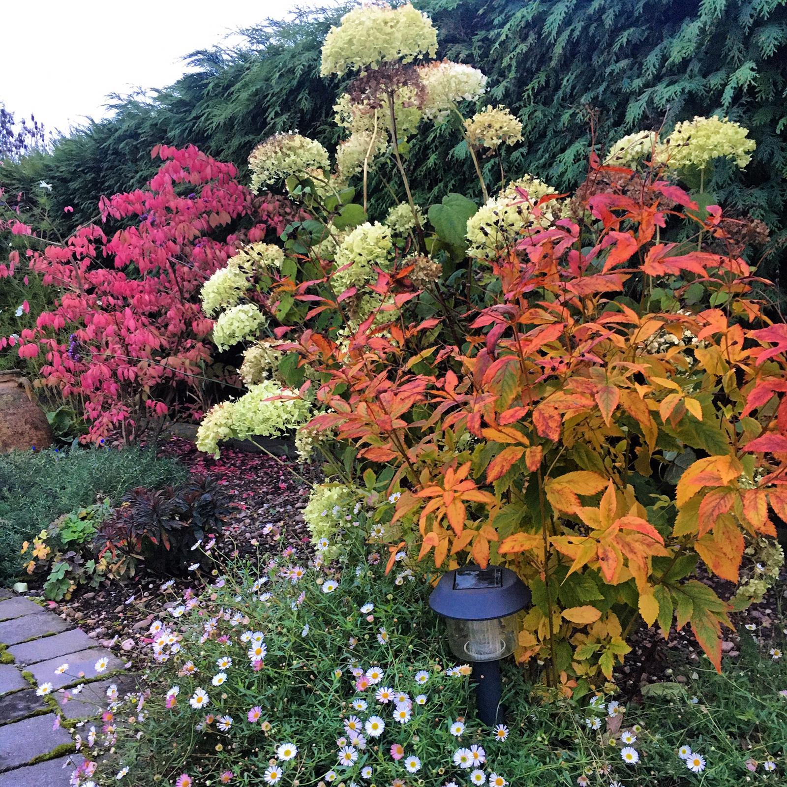 Gardens-Amy-autumn-1