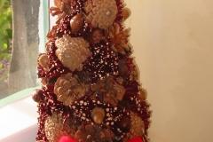 cone tree Beverly sent