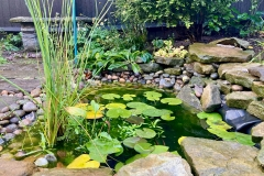 Sophies-new-pond-done-in-spring