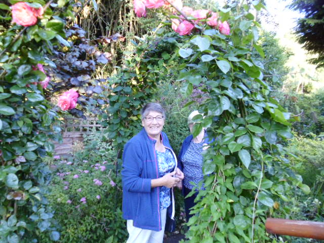 Framed by a rose arch!