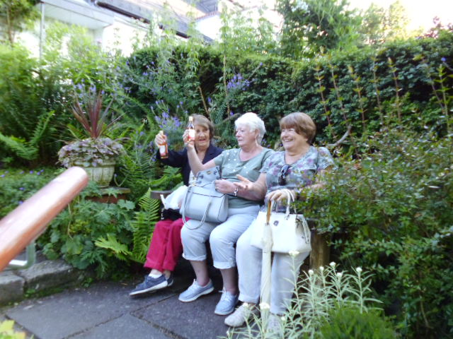 The three wise monkeys caught on camera again!!